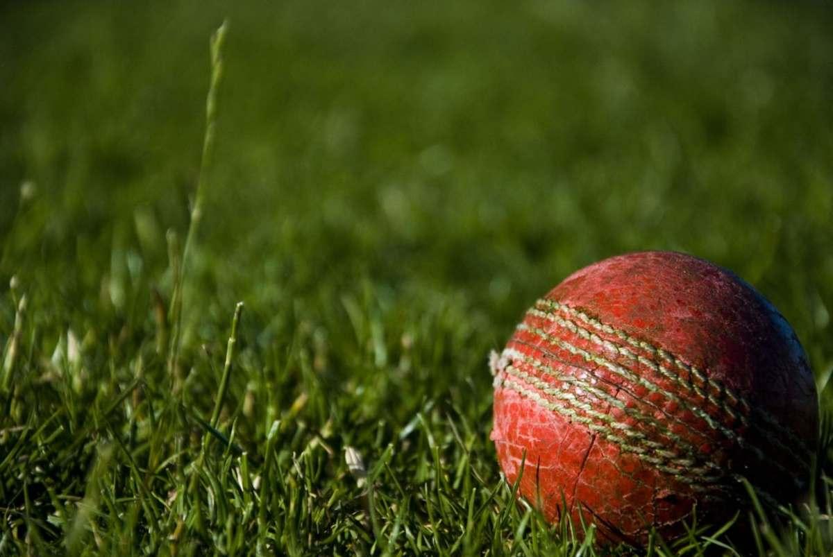 Basics of cricket