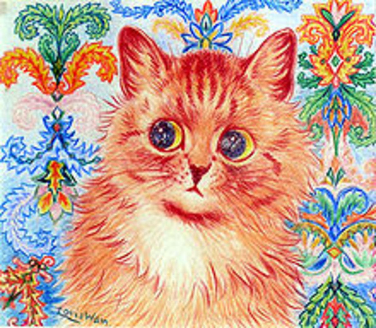 A disturbed Wain kitty