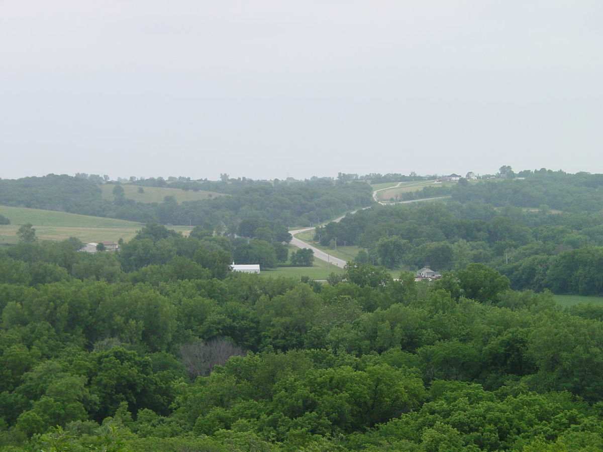 View from the top of Clark Tower