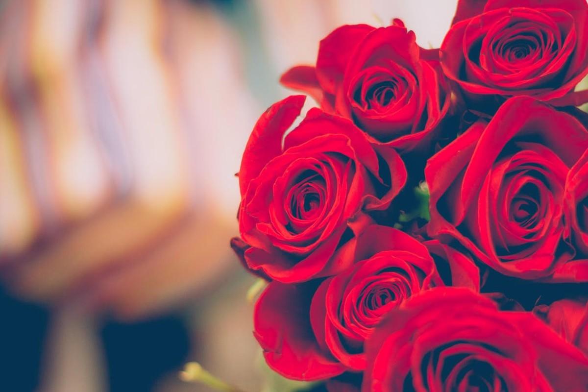 Beautiful roses for beautiful girls.