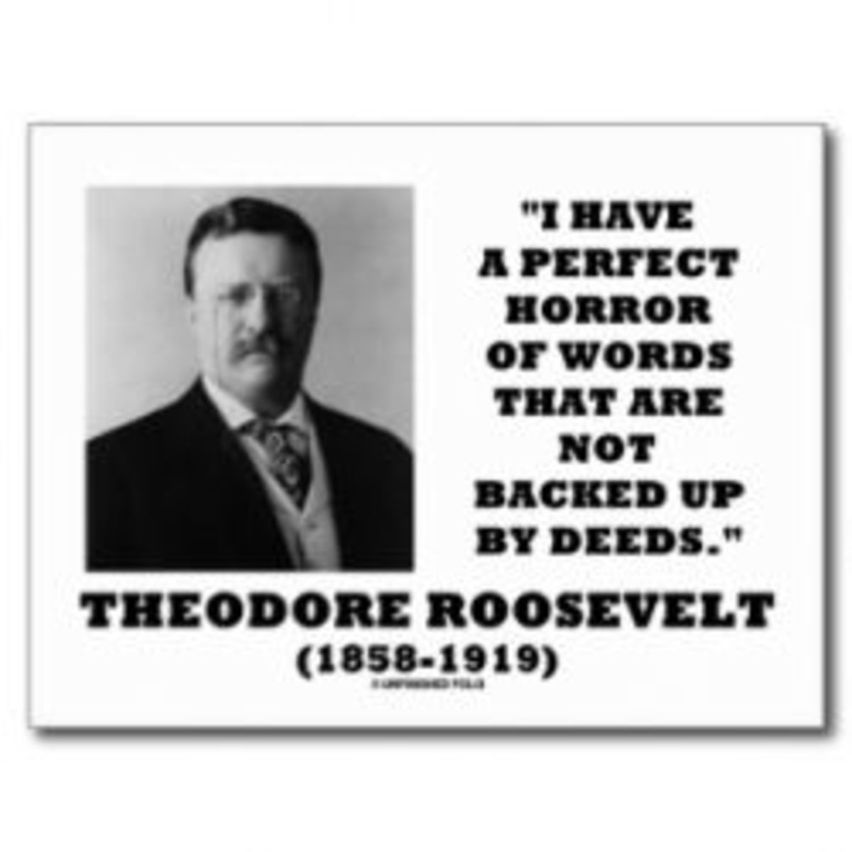 Become Theodore Roosevelt for a Day