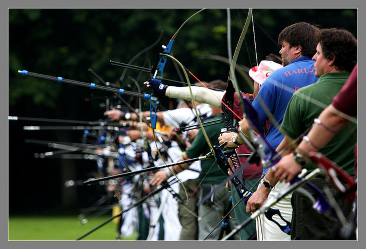 Archery by Scruffy Hound