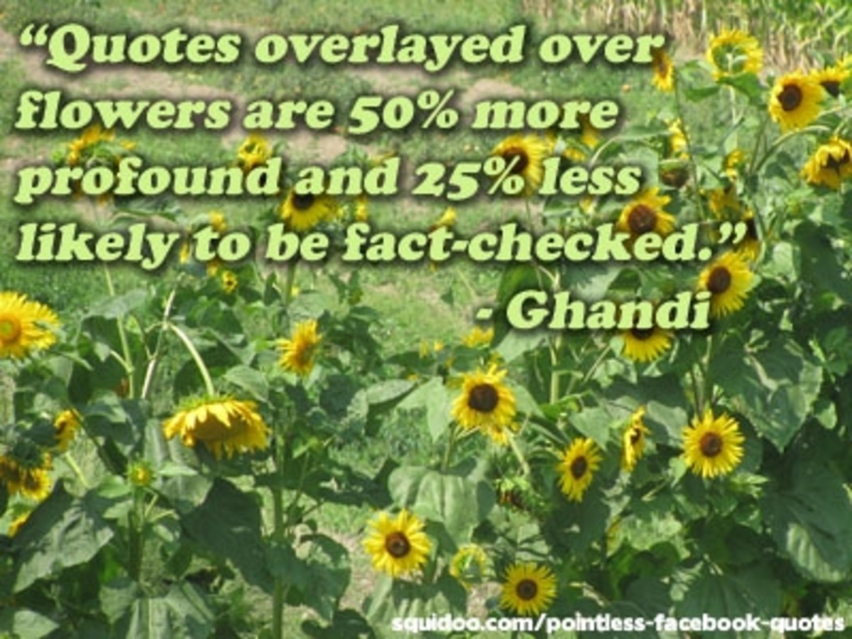 Quotes on Flowers
