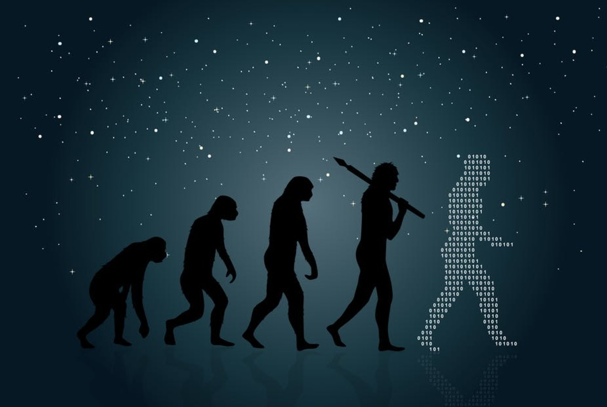 evolution-is-not-a-theory-it-is-a-reality