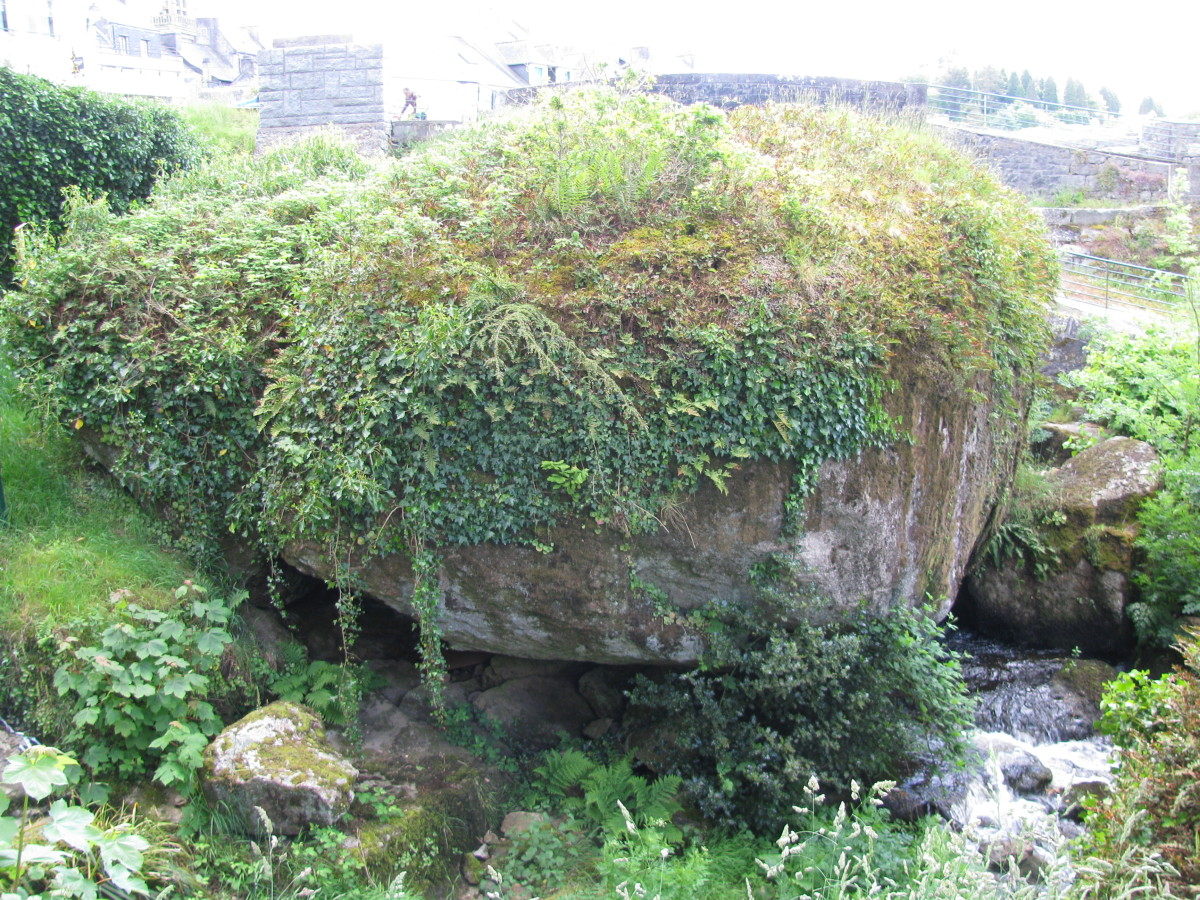 Moss-covered Curved Rock