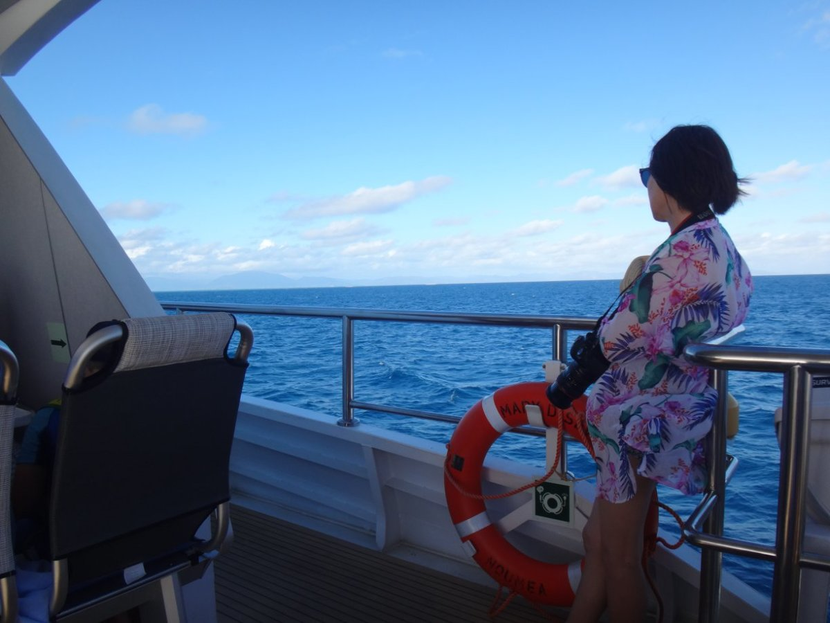 how-to-plan-your-next-cruise
