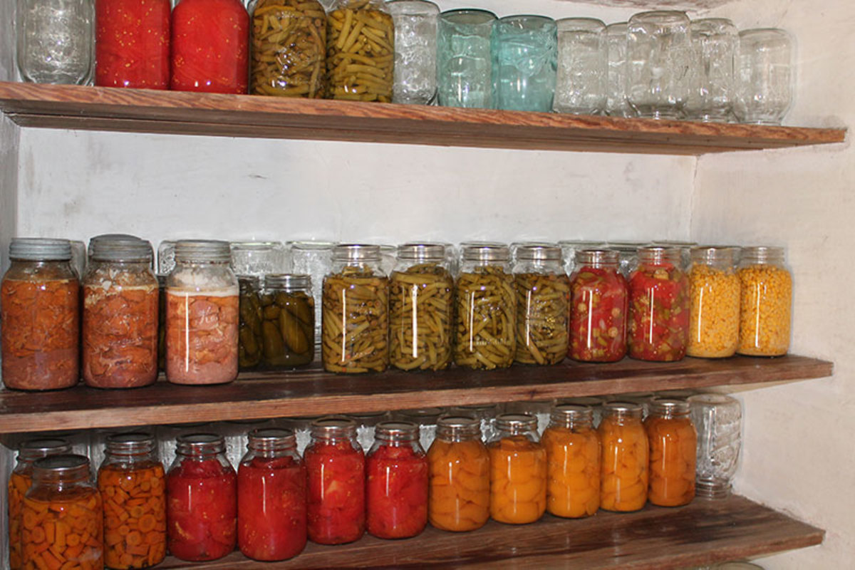 Home preserving of vegetables without all the high sodium and chemical preservatives.
