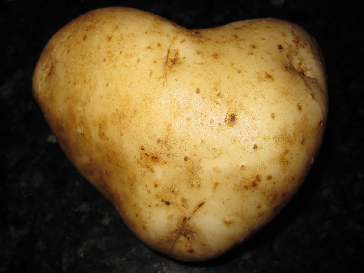 I heart potatoes.