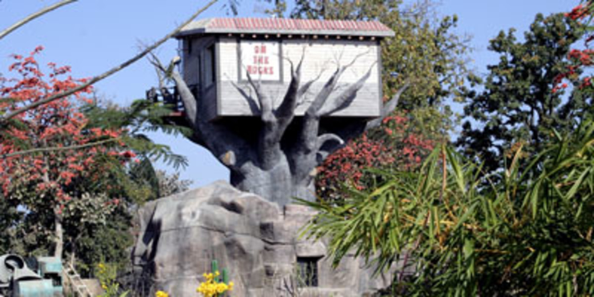 Tree House at Tathastu in Pench