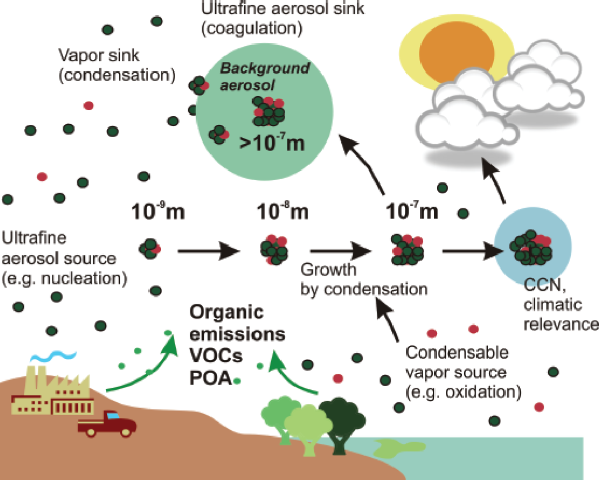 What Is the Impact of the Atmospheric Aerosols on the Climate?