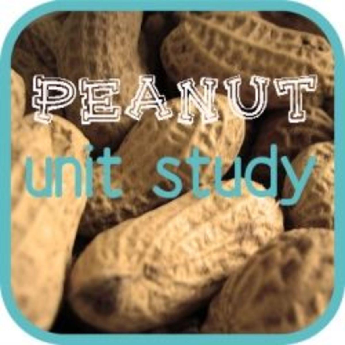 peanut-lapbook
