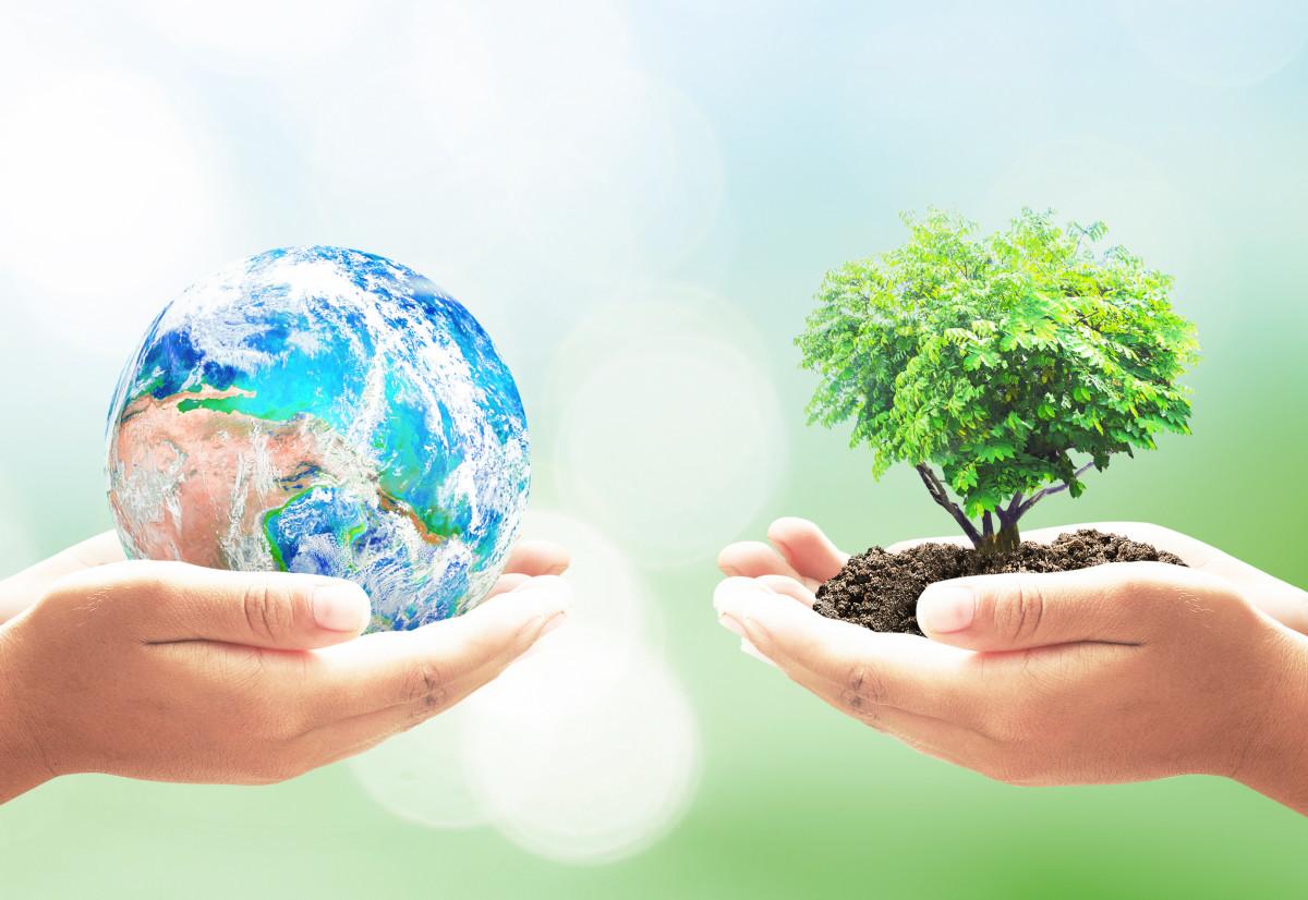 Restore Pur Earth