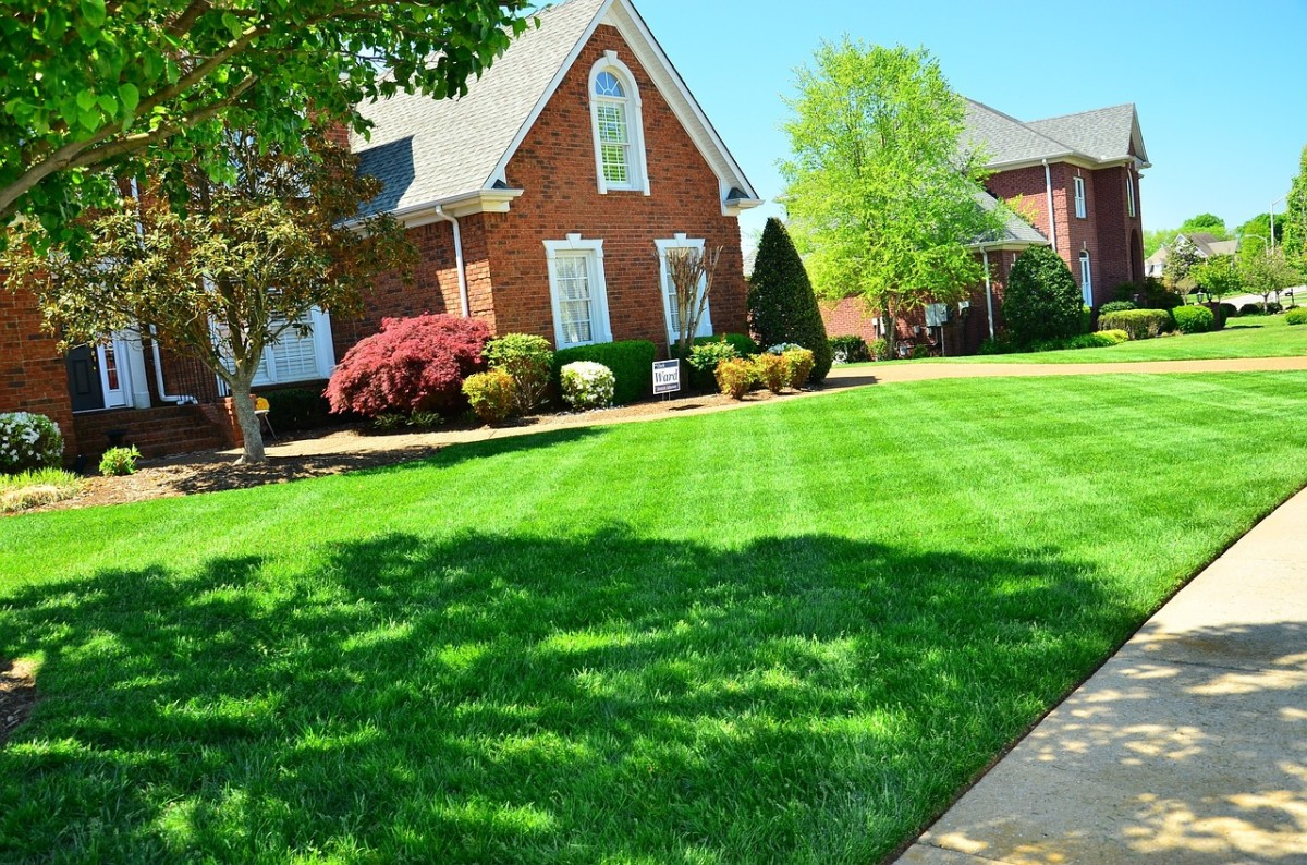 A Practical Guide to Mowing Your Lawn Like an Expert