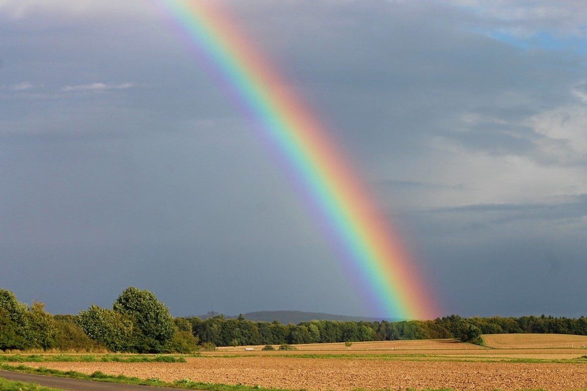Rainbows and Fun Facts About Them