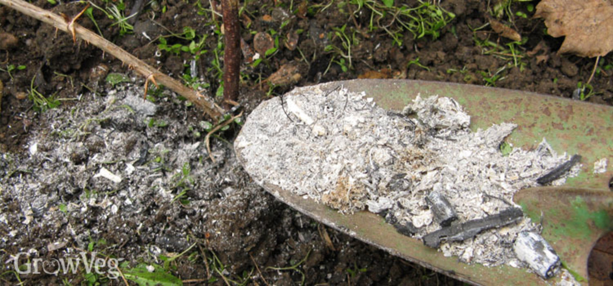 Tilling wood ash into the garden will add minerals to the soil.