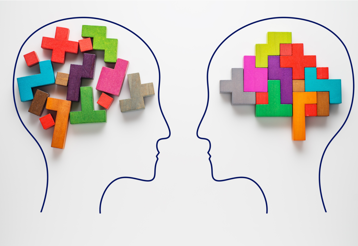 What is the Modular Theory of the Mind?