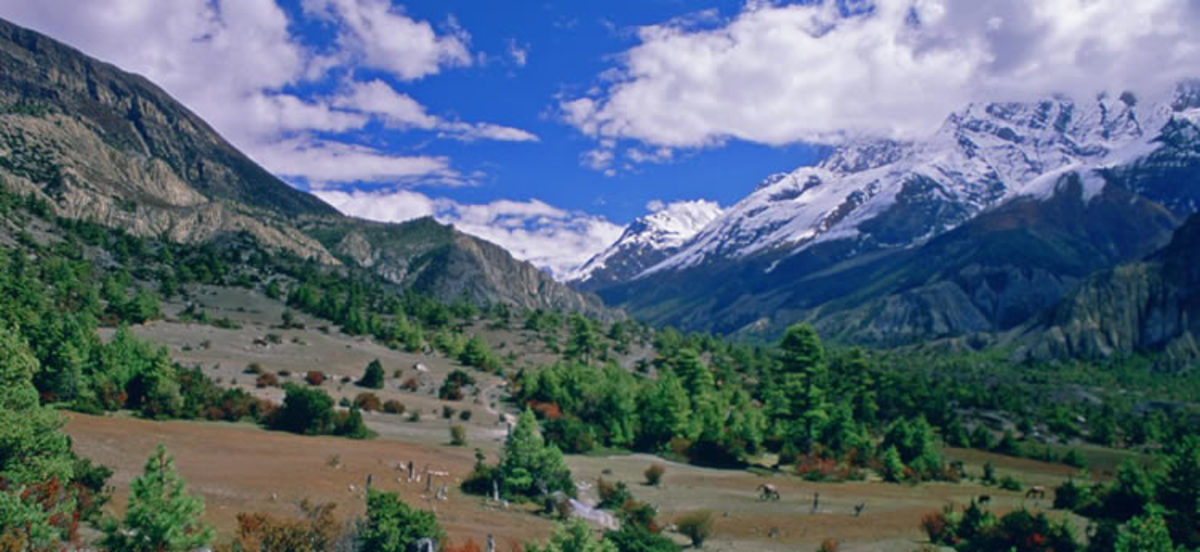 Manang Valley in Annapurna region