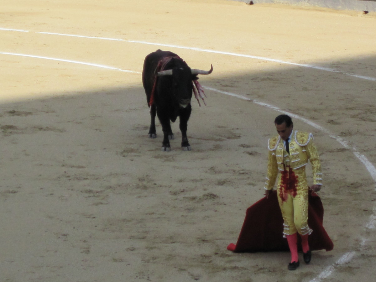 Toreador caught in moment of rest; bull's blood on his clothes