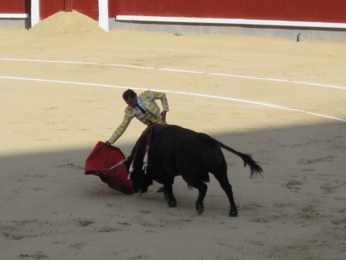 Toreador/matador in Madrid bullfight