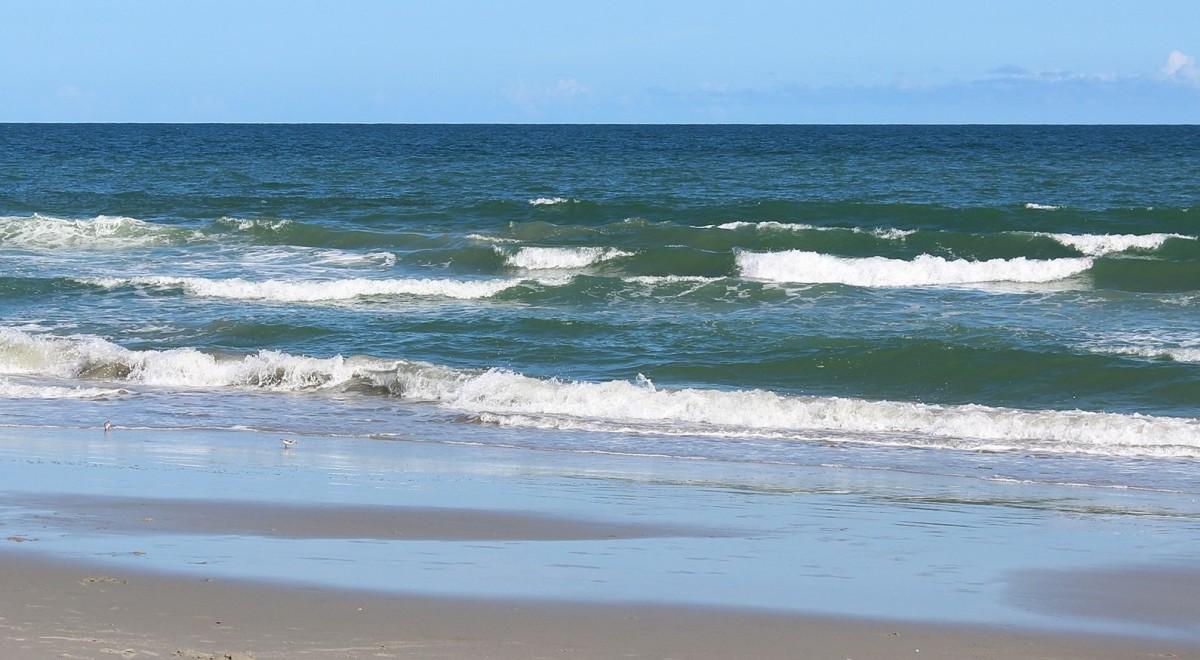 abby-of-long-leaf-lane-a-buzby-beach-short-story