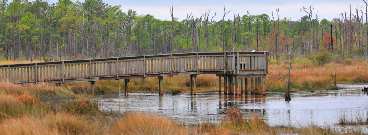 best-tourist-attractions-in-louisiana