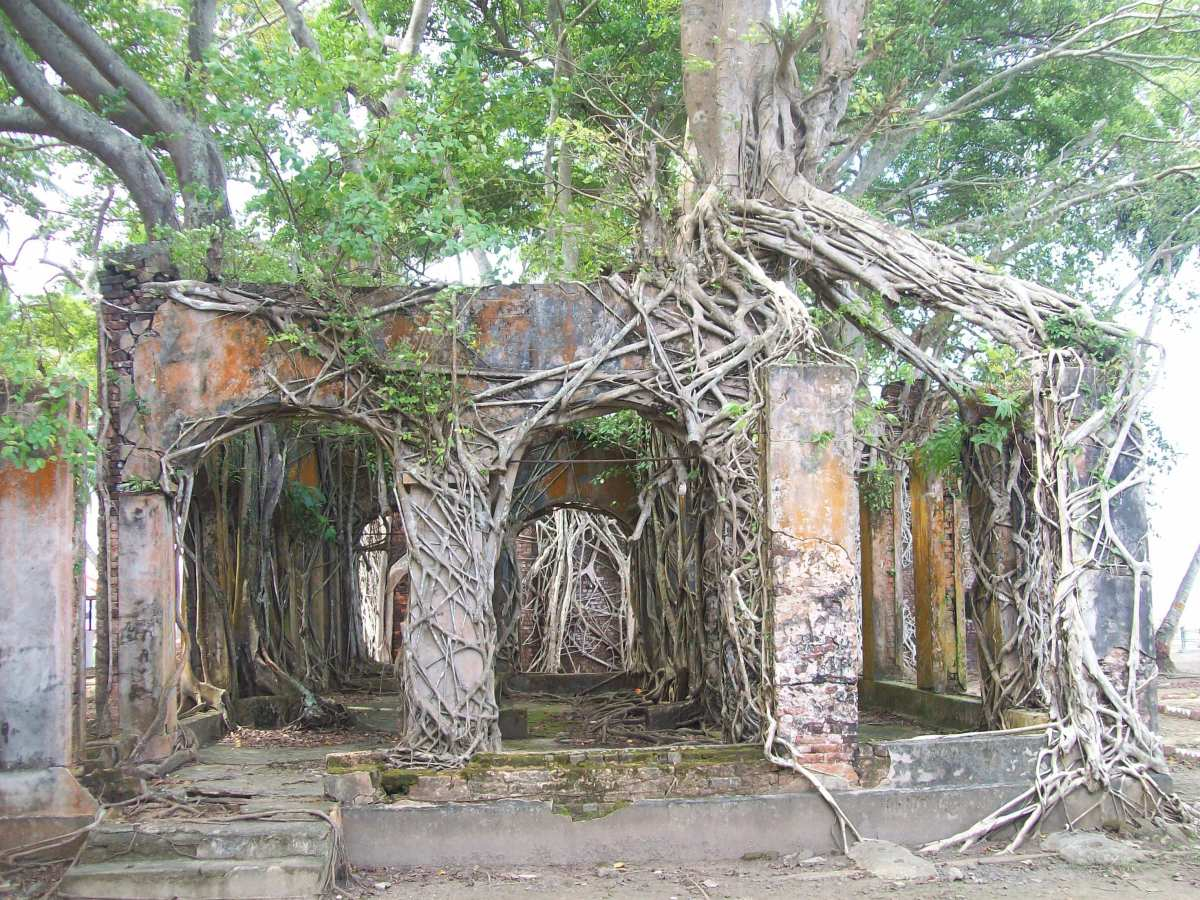 The Frightening History of an Abandoned Indian Island