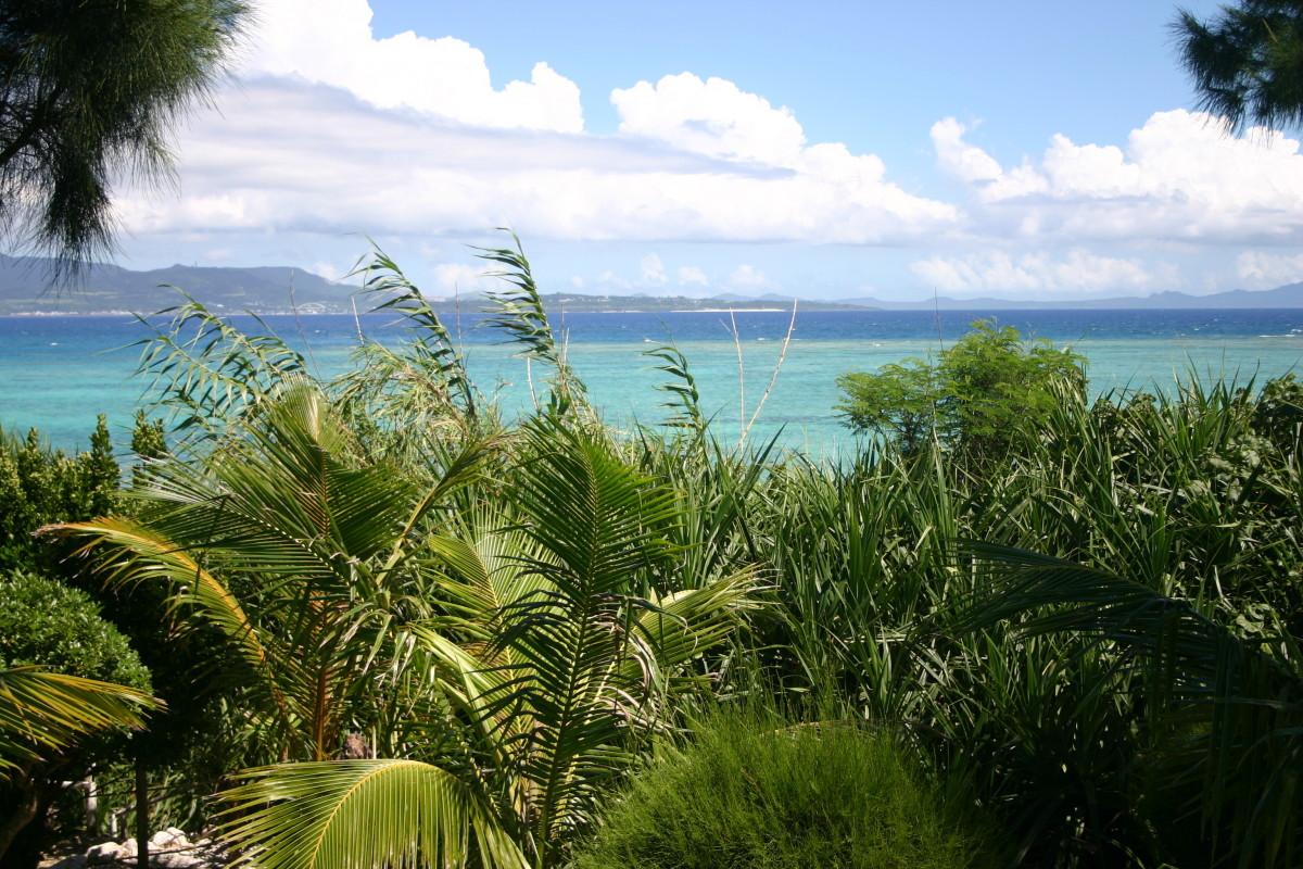 The view from Tokashiki, Okinawa.