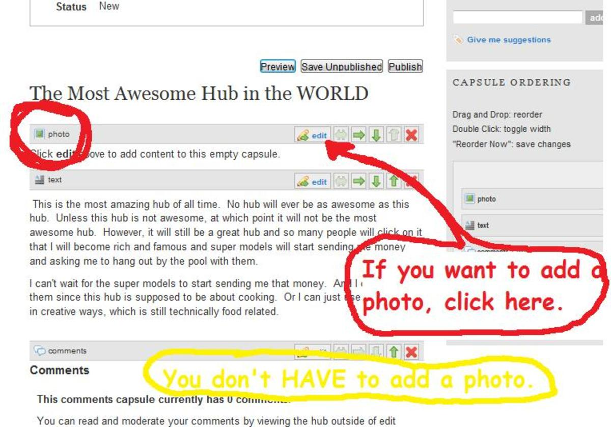 "If you are pulling an image from your computer, I have illustrated that. If you have a URL for an online picture, paste that in to ""The Web"" pop up window instead."