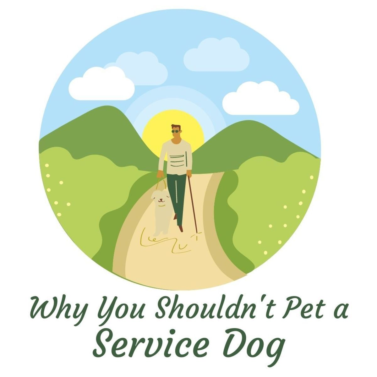 Why Can't I Pet a Service Dog? Why You Should Respect the Vest