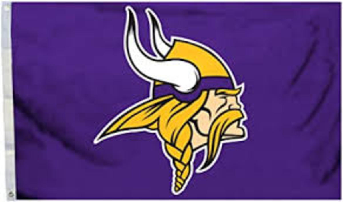 The Minnesota Vikings play in the NFC North alongside the Lions, Packers, and Bears.