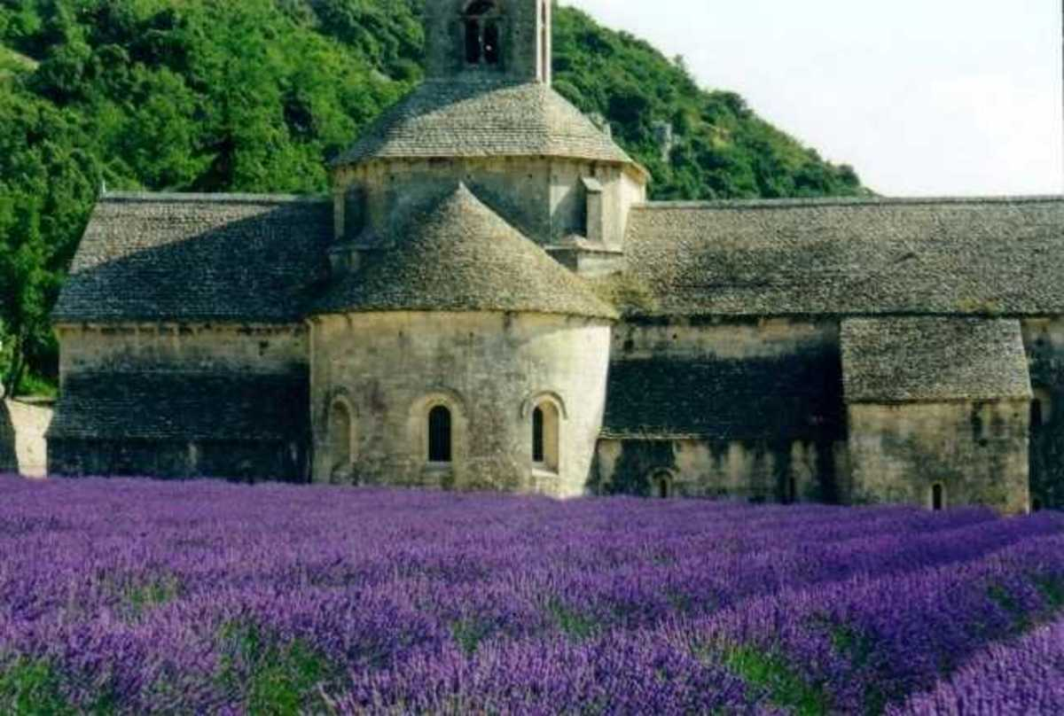 Provence evokes images of fields of beautiful purple flowers, which is due to the enormous amount of lavender that is grown here. Provence is also famous of its exquisite wine.