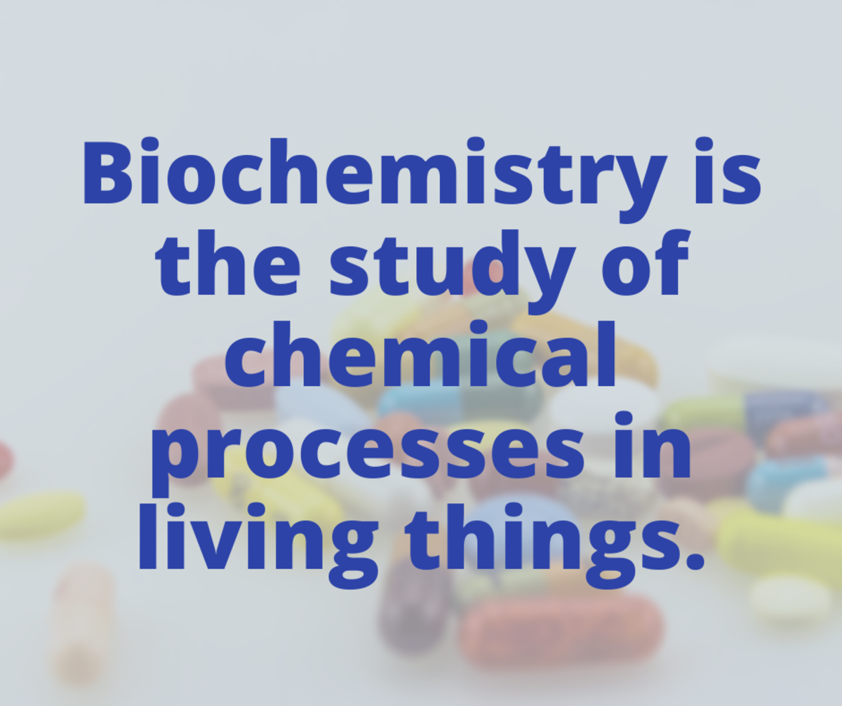 Biochemistry is the study of chemical processes in living things.
