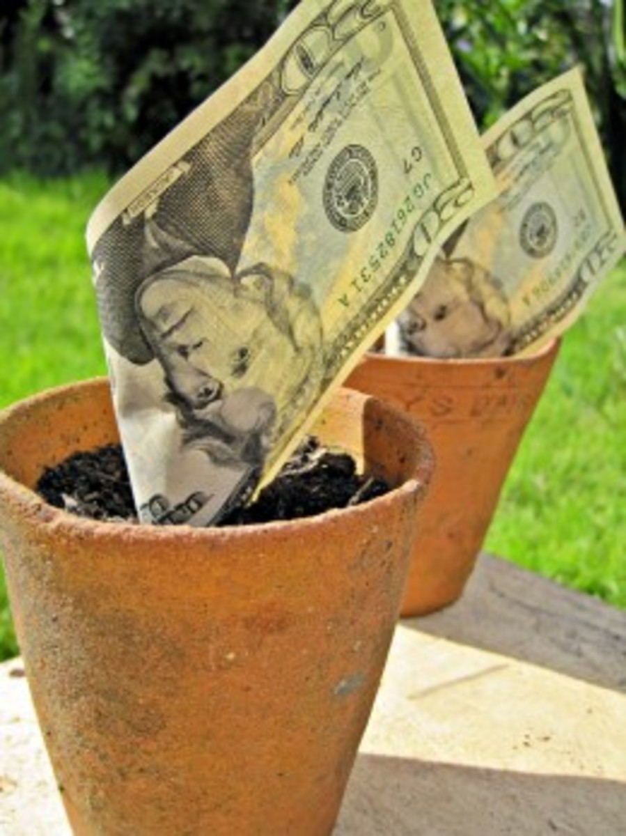 CDs can help grow a financial future.