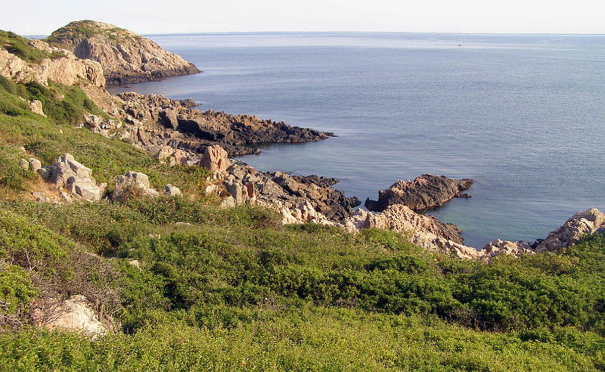The Northern Coast of Kullaberg
