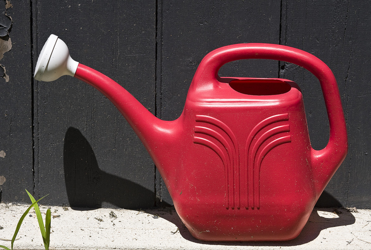 A watering can will make all the difference in your garden!