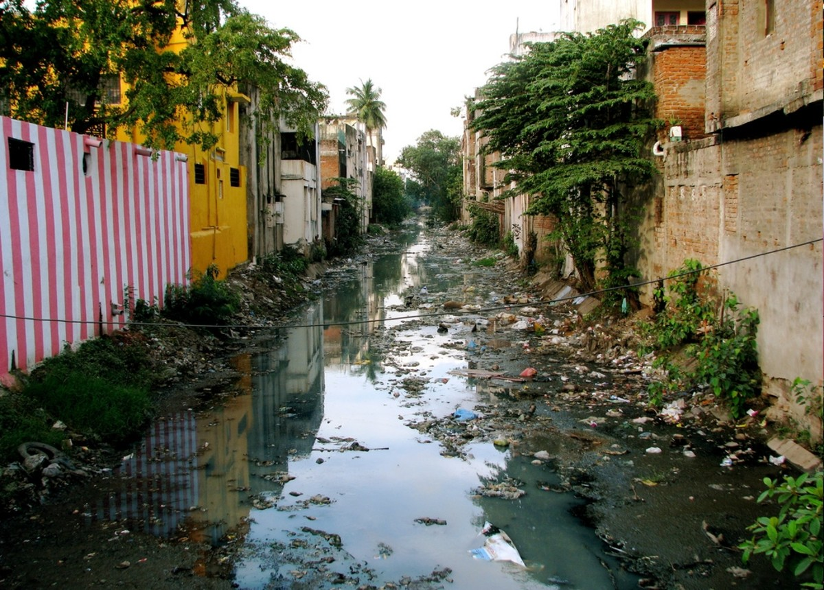 A polluted waterway in Chennai, India