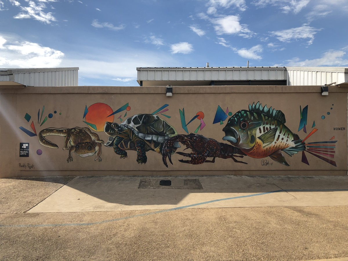 This mural further highlights the wildlife surrounding the San Marcos River.
