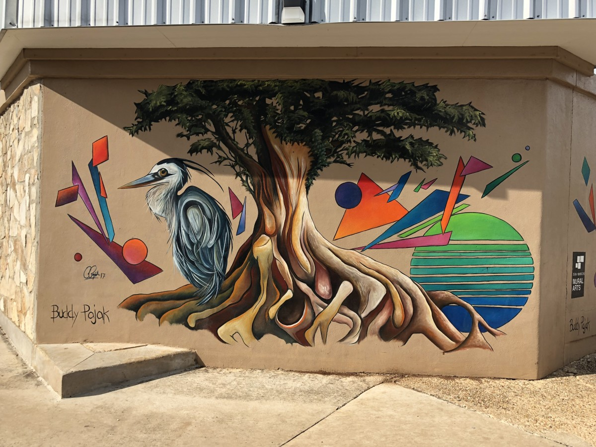 This mural highlights the wildlife surrounding the San Marcos River