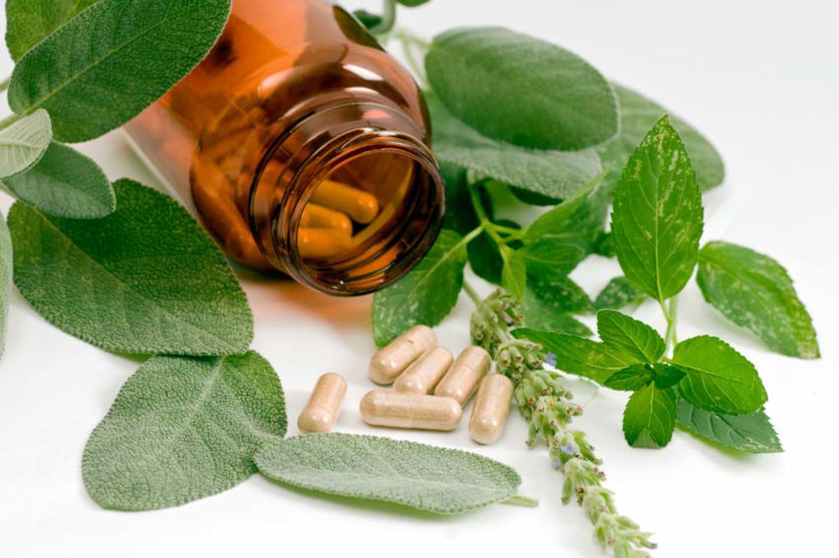 Biological diversity  also provide us with medicine.