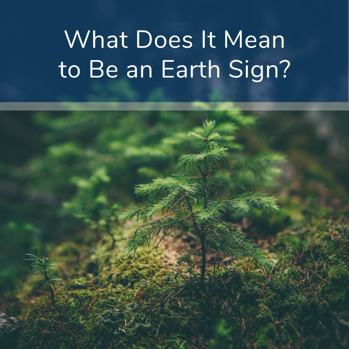 Find out what it means to have the element of earth in your sun sign.