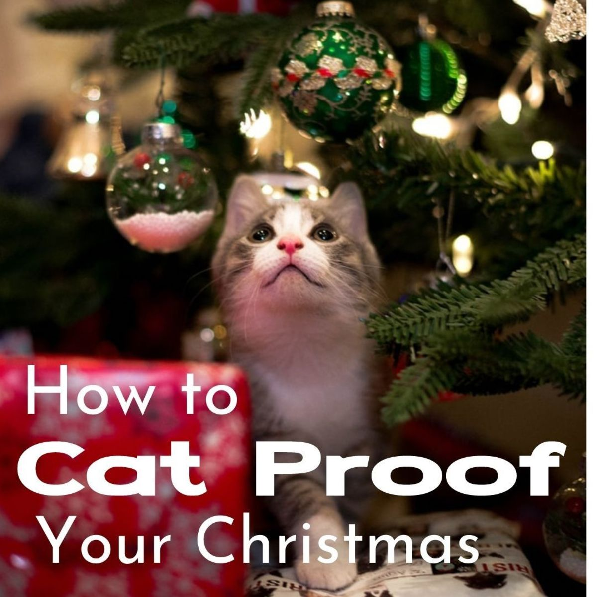 Dangling ornaments are just too tempting even for older, sedate cats. They love to bat them around. Younger cats find them irresiastible and will knock them off, chase them about, and try to look innocent when they break.