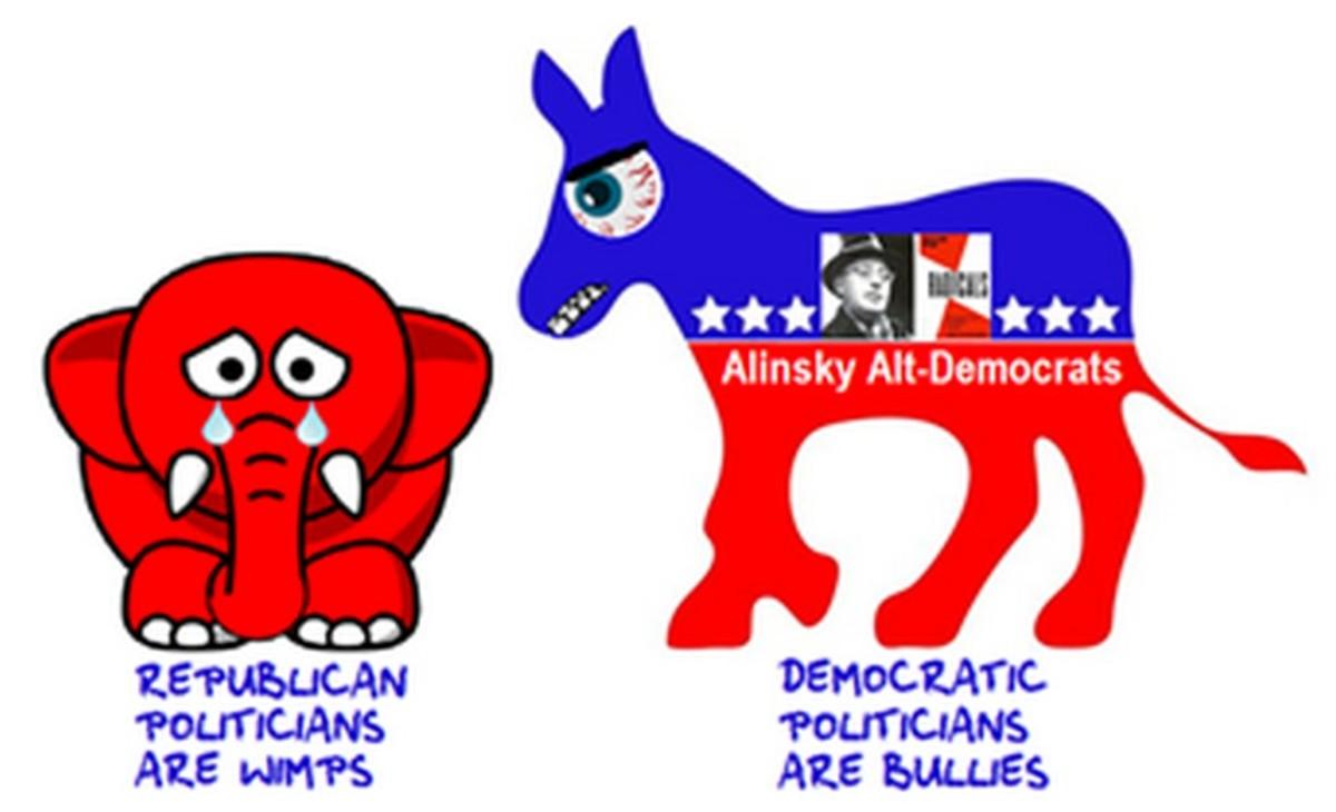 libertarians-and-the-alinsky-alt-democrat-politics-of-crisis