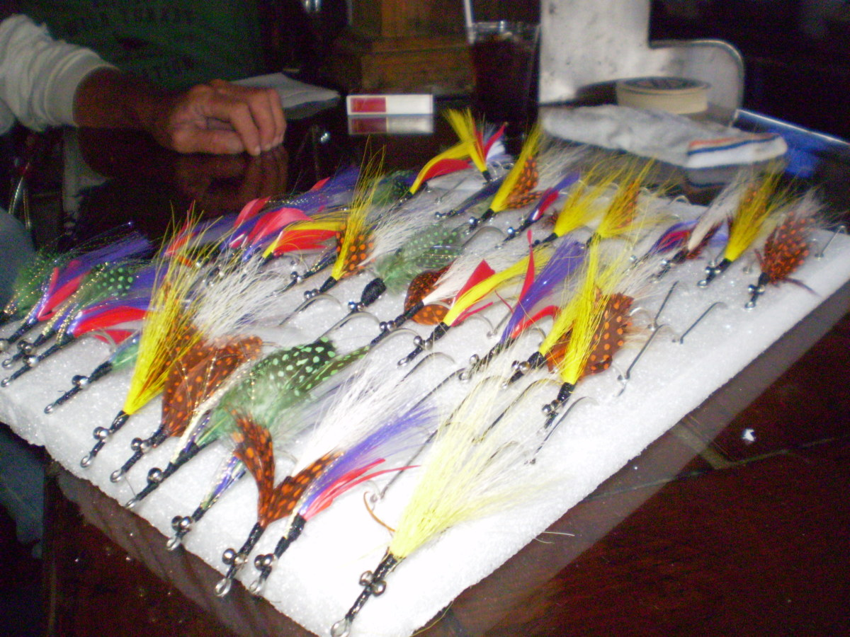 Various colorful salt water fishing lures