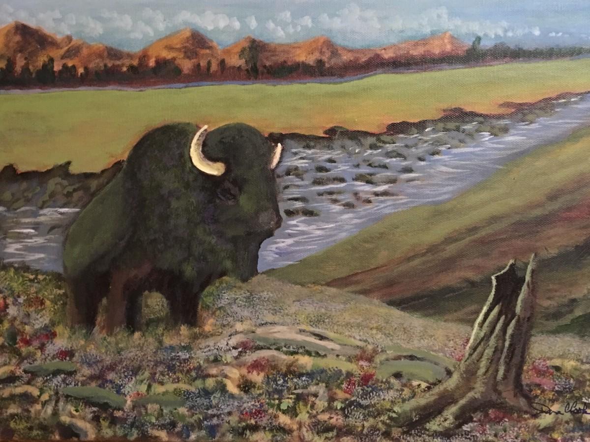Yansi is the Cherokee word for buffalo