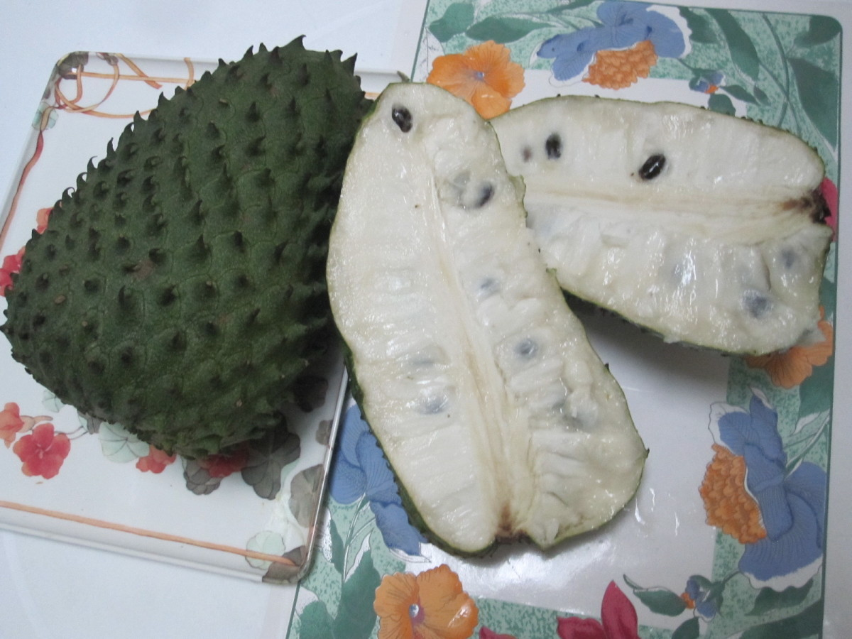 Cancer, Cure Naturally With Guanabana, Soursop, Graviola ...