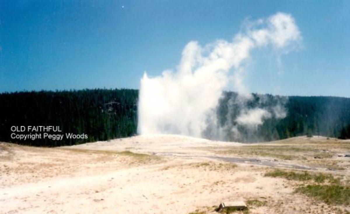 """Old Faithful"" starting its regular show"