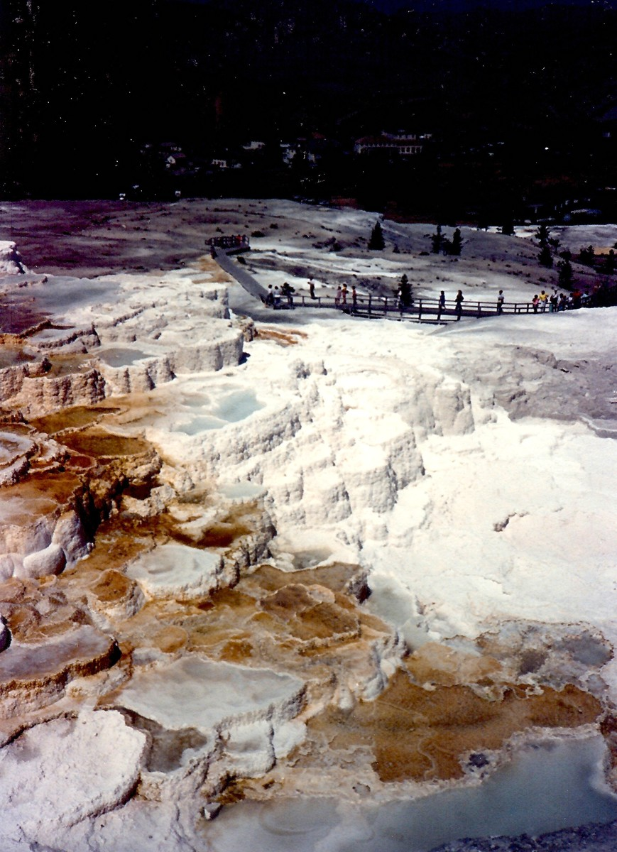 Walkways allow visitors to get a closer perspective of these travertine terraces. Minerva Terrace in Yellowstone