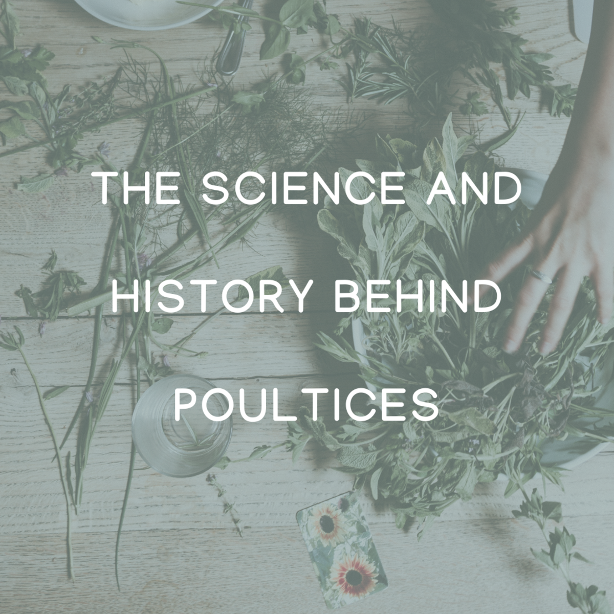 The History of Poultices (and Science!)