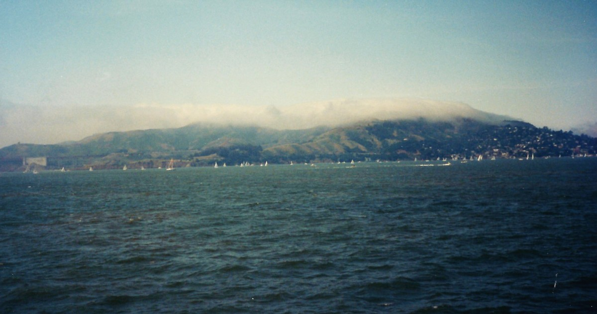 Sausalito as seen from a distance on board the ferry.