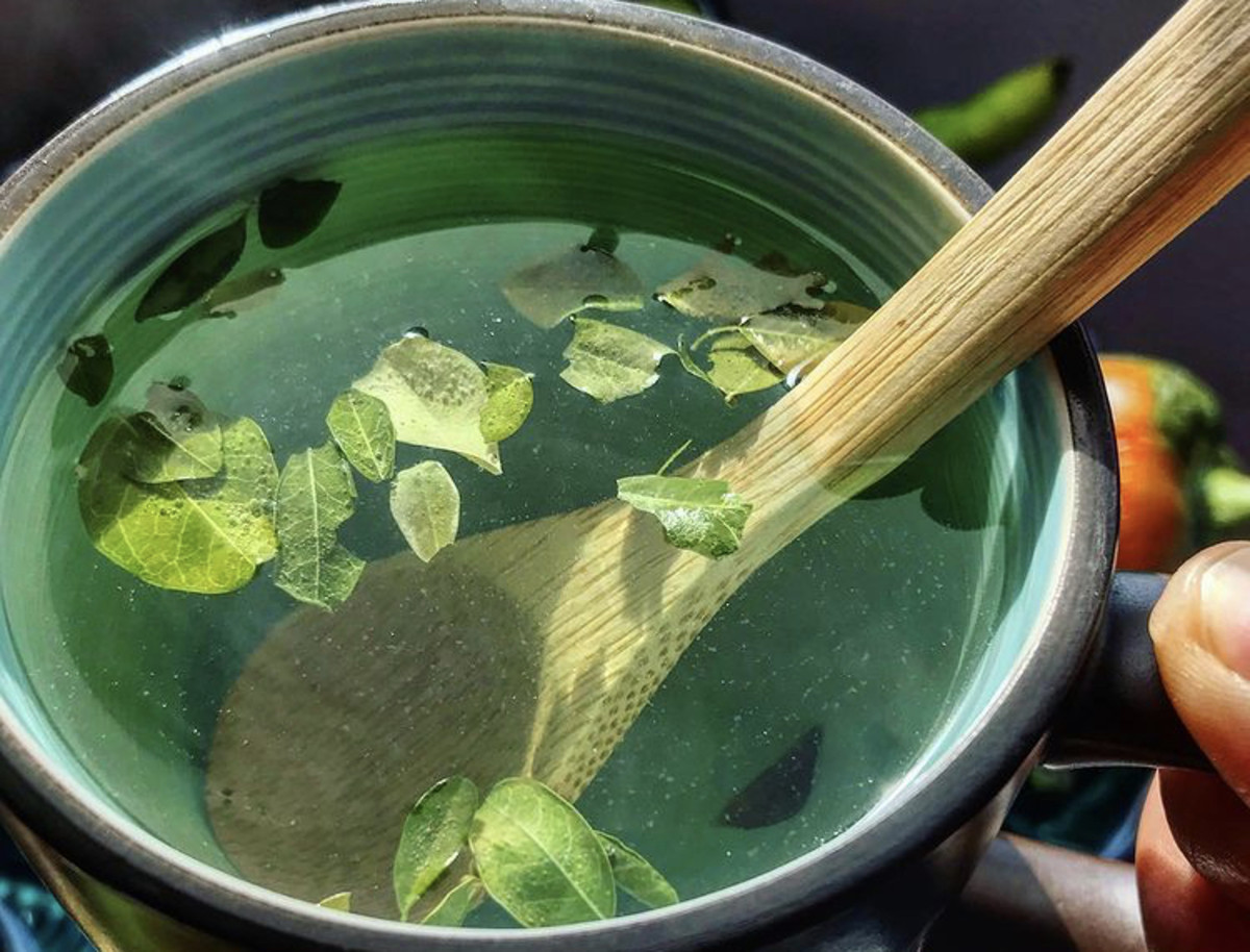 Moringa tea, Popotla, Mexico.  Photo by Nissa Tzun